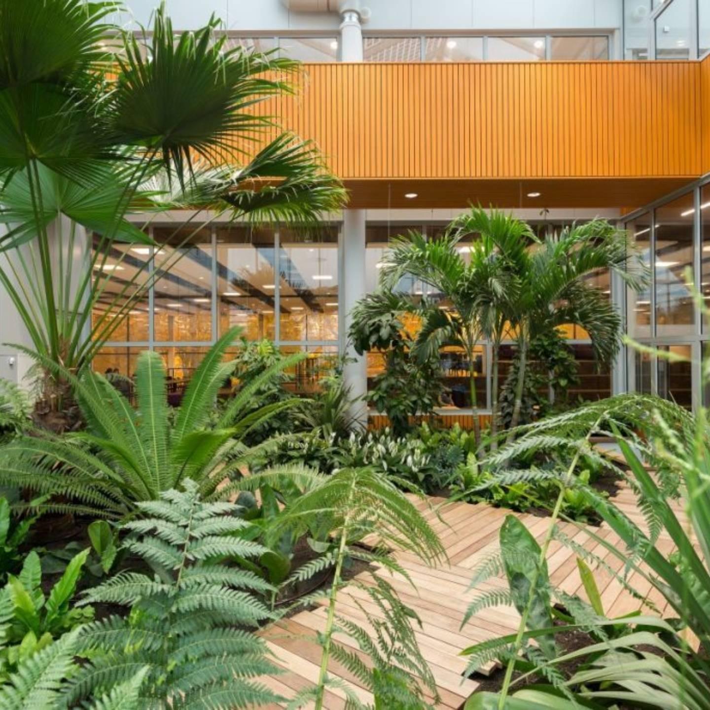 Copijn Campus 013 Binnentuin Interieurbeplanting
