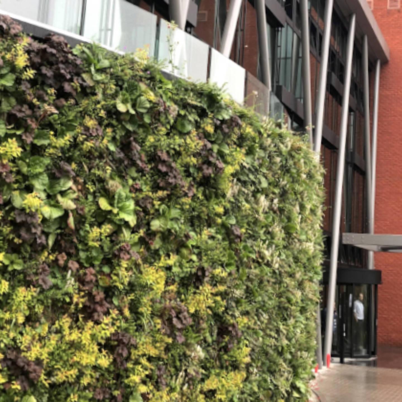 Brussel Greenhouse BXL outdoor curve